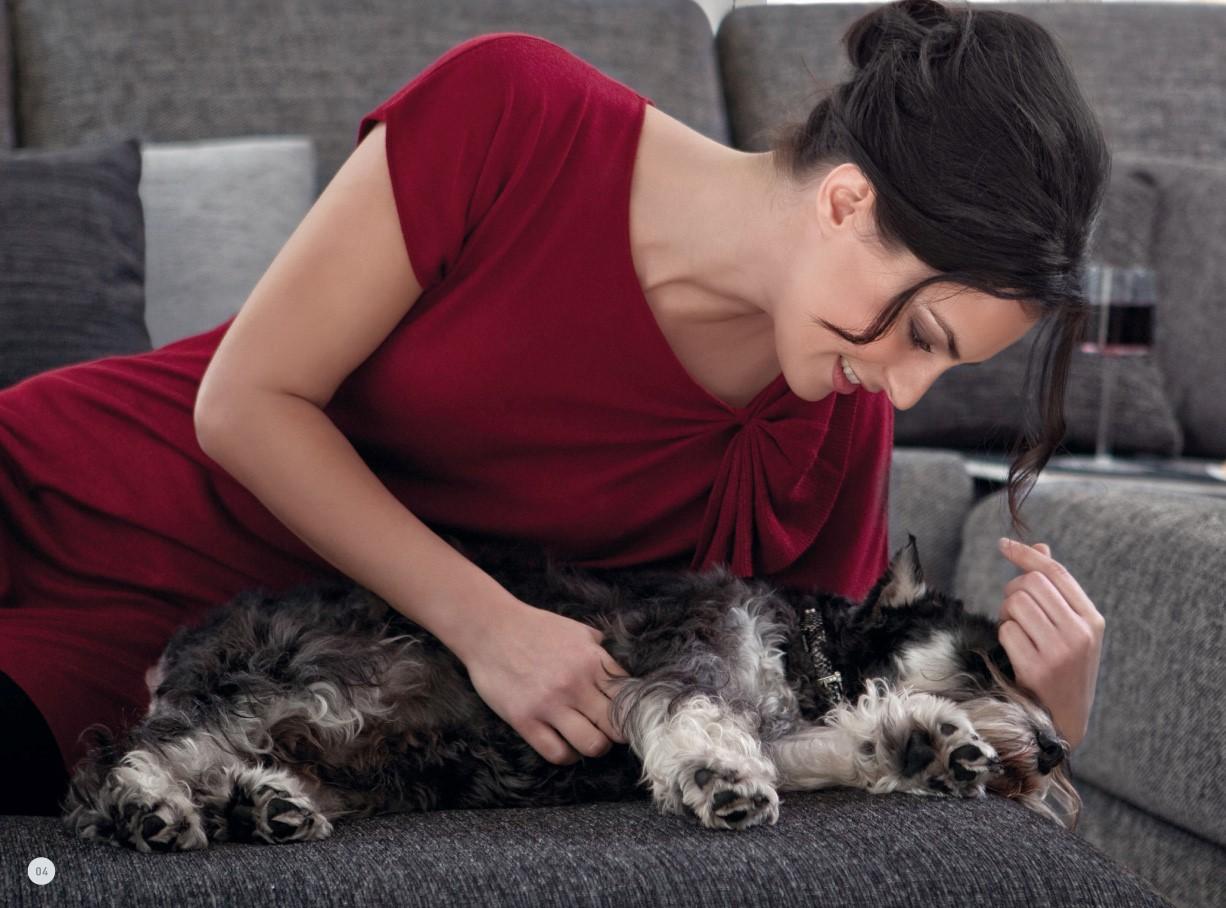 avoir un beau canap et un animal de compagnie c est possible. Black Bedroom Furniture Sets. Home Design Ideas