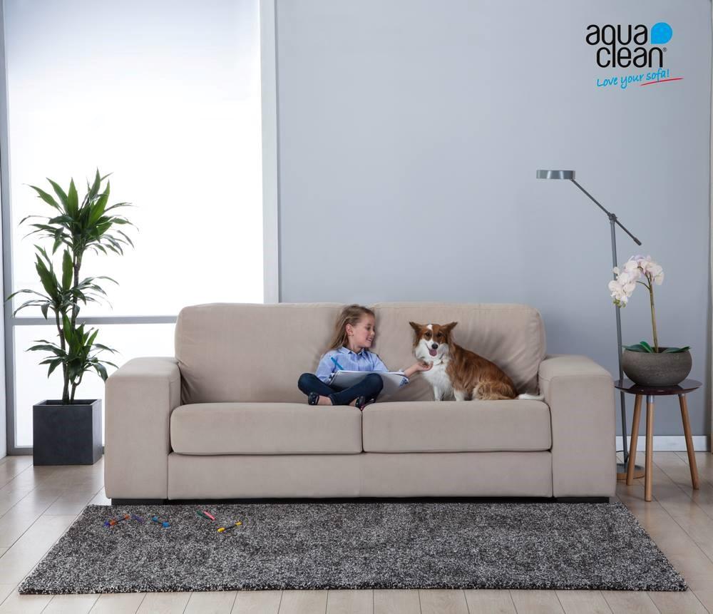 Cómo mantener la higiene con mascotas en casa