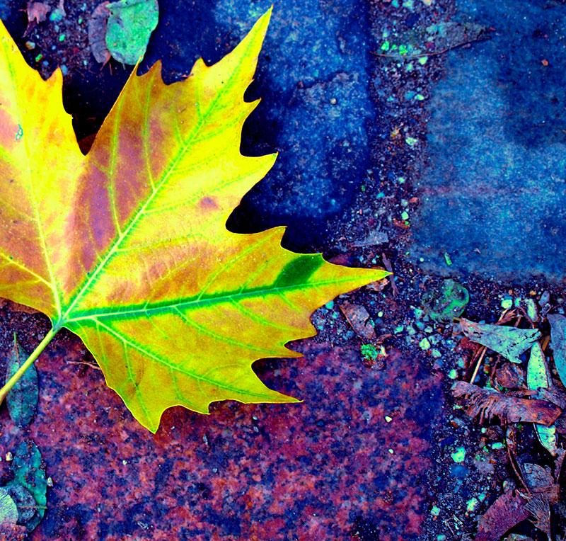 4 Ferias textiles para este otoño que no te puedes perder