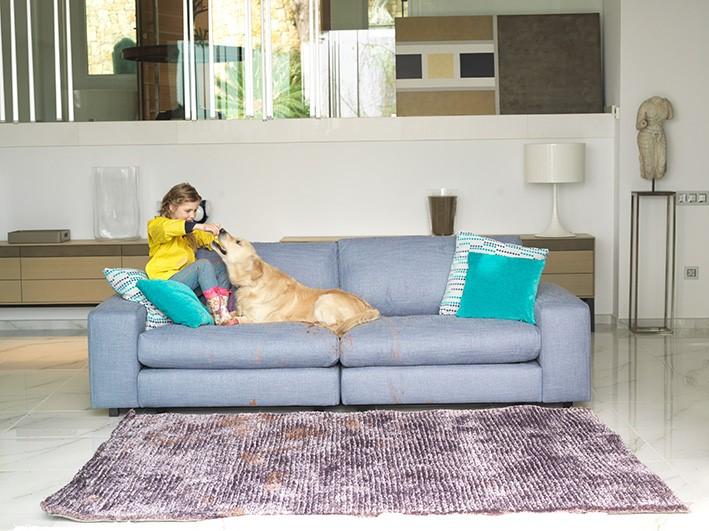 Tener un sofá bonito y mascota, ¡es posible!